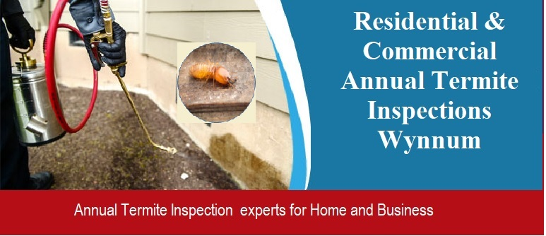 Annual Termite Inspections services