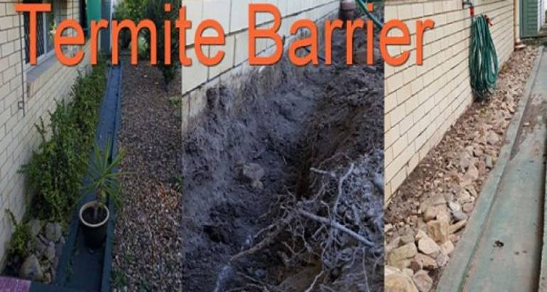 Common Signs of a Poorly Installed Termite Barrier